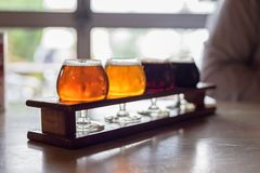Beer flight at a microbrewery royalty free stock photography