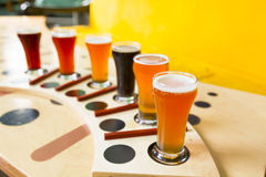 Beer flight royalty free stock image