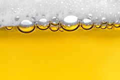 Beer foam Stock Photo