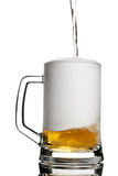 Beer foam. Contrast keg pouring with beer  on white Stock Photography