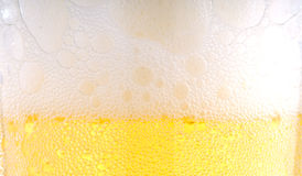 Beer foam. In a glass Stock Photography