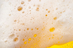 Beer foam Stock Photos