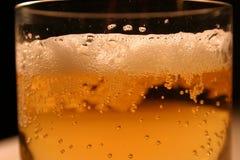 Beer foam. Beer in glass close-up Stock Photos