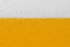 Beer with foam and bubbles Stock Photos