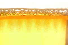 Beer foam close-up Stock Photos