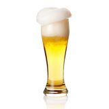 Beer with  foam into glass isolated on white Royalty Free Stock Photo