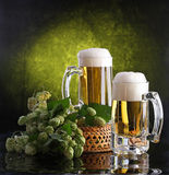 Beer with foam and a hop branch. Still-life with beer and hop stock photos