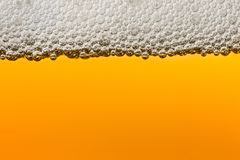 Beer with foam. Macro Royalty Free Stock Image