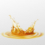 Beer foam splash of white and yellow color on a transparent background. Vector illustration Royalty Free Stock Photo
