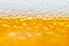 Beer with foam in transparent glass. Macro Royalty Free Stock Image
