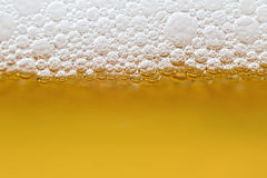 Beer with foam in transparent glass. Macro Royalty Free Stock Images