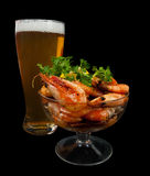 Beer and fried shrimps Stock Image