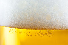 Beer with froth. Close up of beer with froth stock image