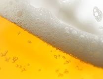 Beer with froth. Within mug super close-up stock image
