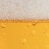Beer with froth. Beer in a glass with condensation and froth forming a background stock images