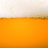 Beer froth. Macro bubbles of beer froth royalty free stock images