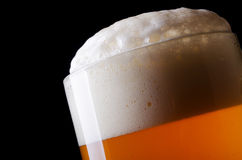 Beer froth. In glass close-up stock photo
