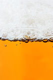 Beer and froth Stock Photography
