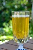 Beer at garden terrace Stock Images