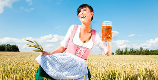 Beer girl. Funny oktoberfest beer holding woman with wheat in meadow cornfield stock photos