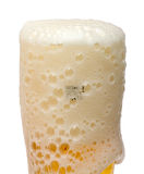 Beer in a glass. Foamy beer in a glass. Isolated Stock Images
