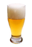Beer is in glass Stock Image