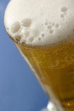 Beer Glass. Tall glass of beer with head Royalty Free Stock Photography