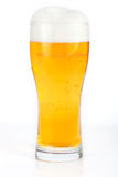Beer Glass. Isolated on a white background with a clipping path royalty free stock image
