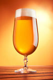 Beer in a glass. On bright background stock photography