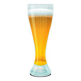 Beer in glass Stock Photography