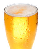 Beer is in glass Stock Images