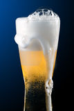Beer into glass. On a black royalty free stock photography