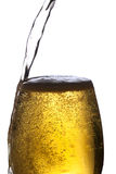 Beer glass. Stock Photography