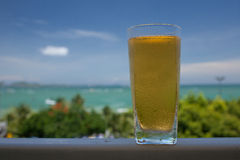 BEER IN A GLASS. Royalty Free Stock Photography