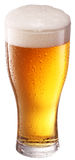 Beer glass. Stock Photo