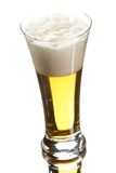 Beer in glass Royalty Free Stock Photography