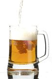 Beer in glass Stock Image