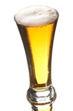 Beer in glass Stock Photos