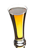 Beer in glass. On the white background Stock Images