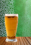Beer glass against ice crystals and drips green background. Stock Images