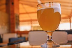 Beer glass on the bar counter royalty free stock image