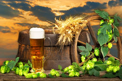 Beer Glass With Barley And Hop Cones Royalty Free Stock Photos