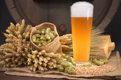 Beer glass with barrel. Beer glass and beer barrel with hops, wheat, grain, barley and malt Stock Photos