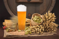 Beer glass with barrel. Beer glass and beer barrel with hops, wheat, grain, barley and malt Royalty Free Stock Images