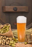 Beer glass with barrel. Beer glass and beer barrel with hops, wheat, grain, barley and malt Stock Images