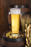 Beer glass. Beer barrels, hops, wheat, grain, barley and malt Stock Photography