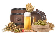 Beer glass with barrels. Beer glass and two beer barrels with hops, wheat, grain, barley and malt isolated on white Royalty Free Stock Images