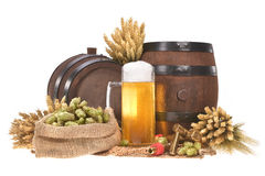 Beer glass with barrels. Beer glass and two beer barrels with hops, wheat, grain, barley and malt isolated on whiten Royalty Free Stock Photography