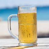 Beer in glass Royalty Free Stock Image
