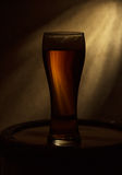 Beer glass of beer Stock Image